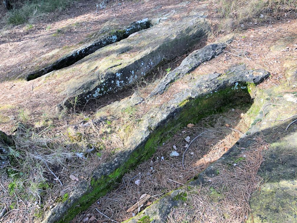 Aquesta imatge té l'atribut alt buit; el seu nom és 07-Necropolis-de-la-Vinya-del-Guitarra-1.jpg